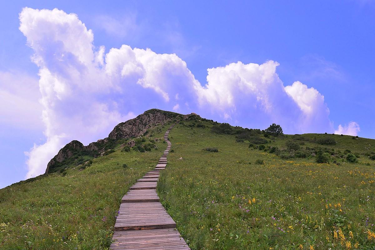 辽河源国家森林公园:山泉众多 水量充沛