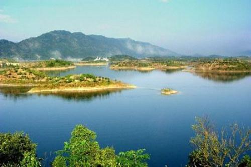 阳新仙岛湖旅游风景区:植被优良 物种丰富